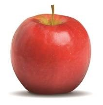 LOGO_Bonita, the new scab-resistant organic apple variety from Val Venosta