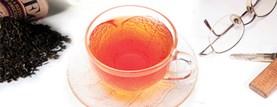 LOGO_Organic Darjeeling Tea