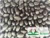LOGO_Black kidney beans (black turtle beans)