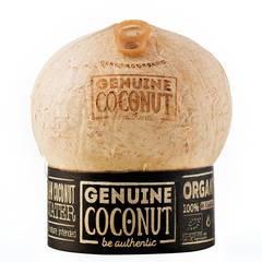 LOGO_Organic raw coconut water / 6 pack