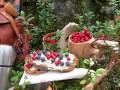 LOGO_Die Natur bringt in Wäldern und Sümpfen eine reiche Beerenernte hervor