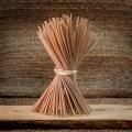 LOGO_Pasta integrale – Grani Antichi – Spaghettone