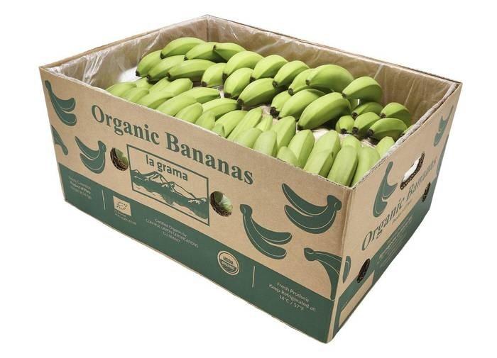LOGO_Organic Banana