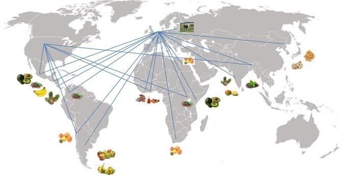 LOGO_SMI-Worldwide