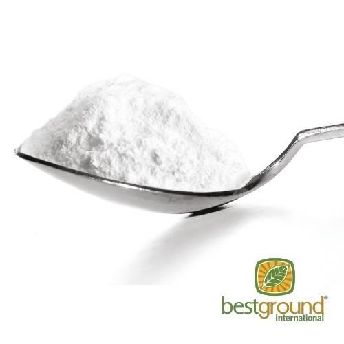LOGO_Agave powder