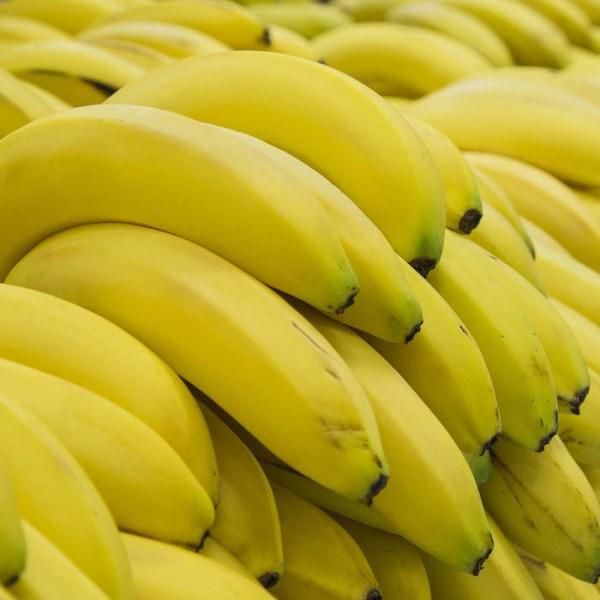 LOGO_Bananen