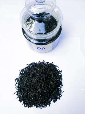 LOGO_Black Tea Orthodox OP