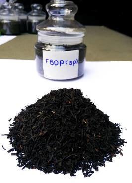 LOGO_Black Tea Orthodox FBOP (SP)