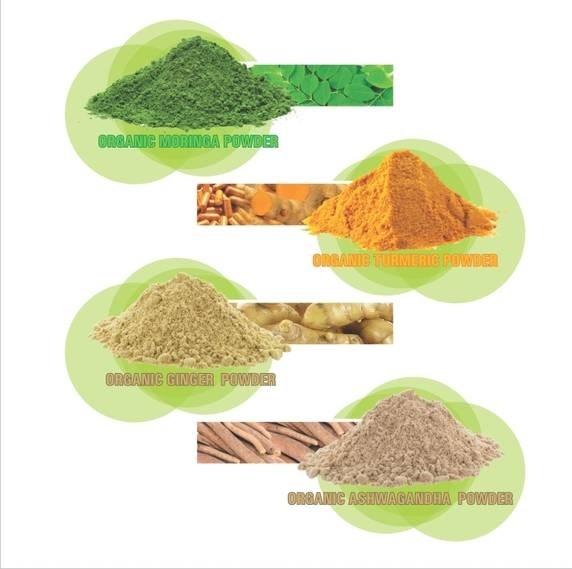 LOGO_Organic Powder