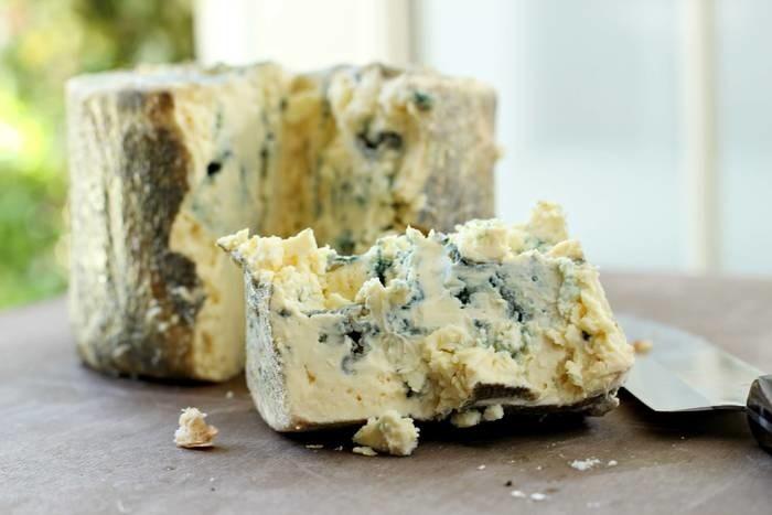 LOGO_Blue mould cheese bio