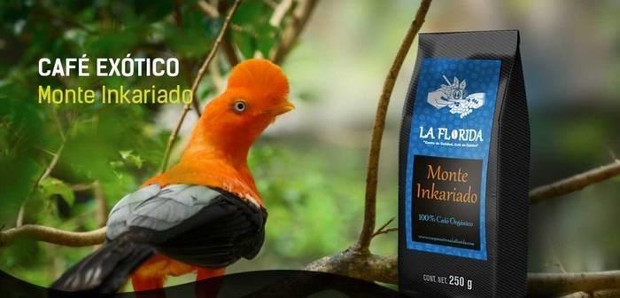 LOGO_Coffee Exotico Monte Inkariado