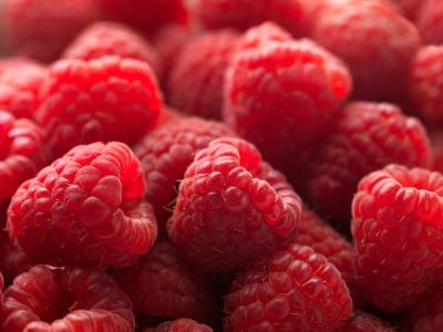 LOGO_Organic raspberry seed oil