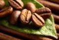 LOGO_Organic coffee bean oil