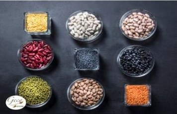 LOGO_Legumes, Cereals, Seeds, Nuts