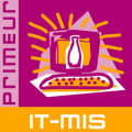 LOGO_IT-mis