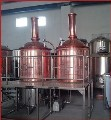 LOGO_300L Beer Brewing Equipment