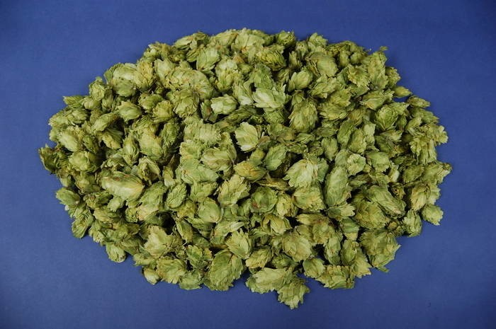 LOGO_Pressed hops