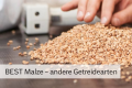 LOGO_BEST Wheat Malt