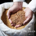 LOGO_White Swaen © Full of Wheat (Wheat Malts)