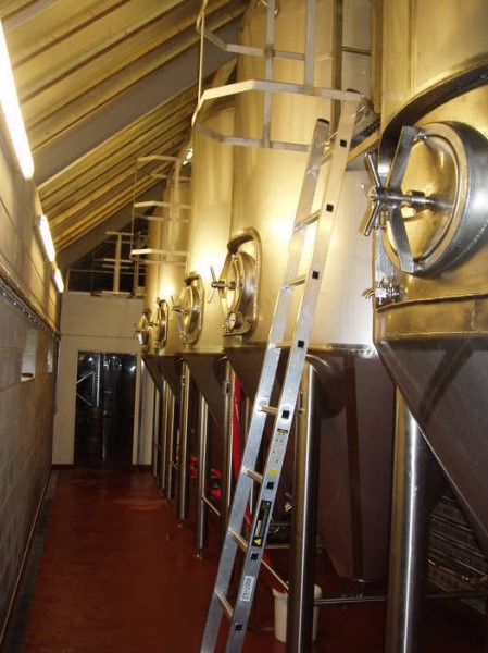 LOGO_Fermenters / Cylindrical - Conycal tanks