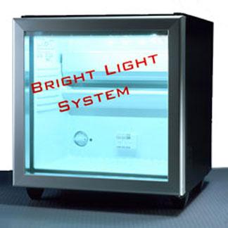 LOGO_Bright Light System