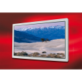 "LOGO_New 9.0"" QHD Color TFT-LCD Module (AA090AA01)"