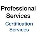 LOGO_Professional Services