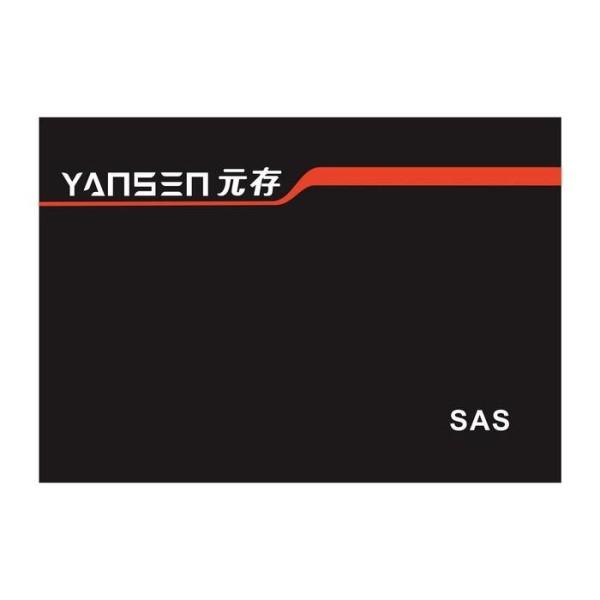 LOGO_YANSEN ,SAS SSD