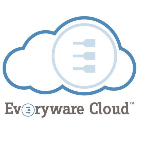 LOGO_Everyware Cloud