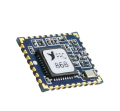 LOGO_Frequency Hopping Digital Data RF Transceiver Module