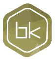 LOGO_Codix Bk RISC-V processor IP