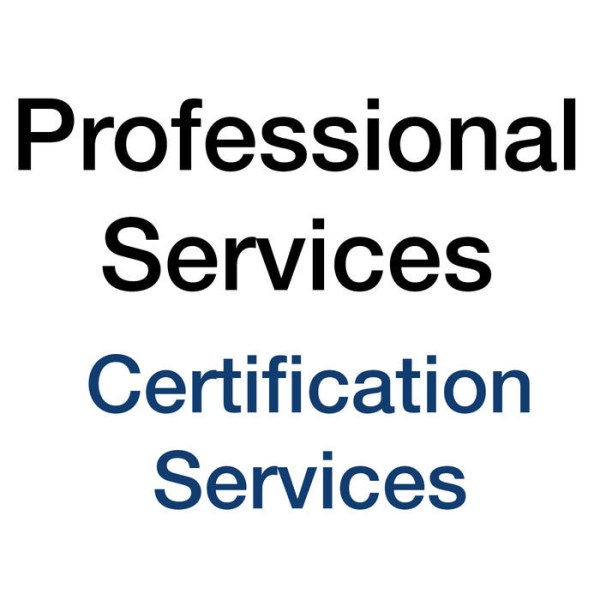 LOGO_Professional Services