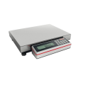 LOGO_PROFESSIONAL Compact scale