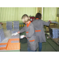 LOGO_Co-packing and packaging