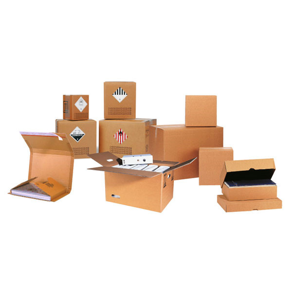 LOGO_standard cartons, and postal Packaging products