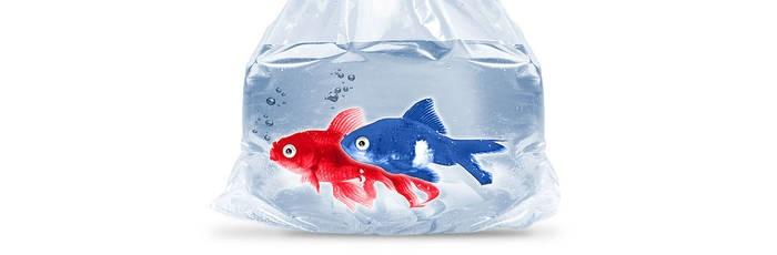 LOGO_Beutel und Säcke aus Polyethylen (PE)