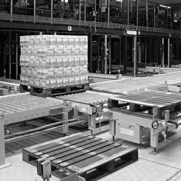LOGO_Standard pallet conveyors