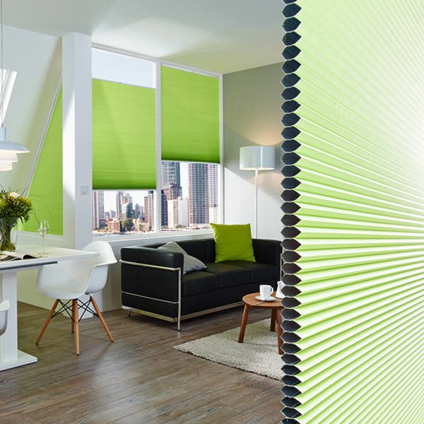 LOGO_Pleated blinds