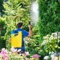 LOGO_Piston knapsack sprayer Hobby 1800