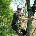 """LOGO_Training for arborists (600 h, degree of """"Fachagrarwirt Baumpflege und Baumsanierung"""")"""