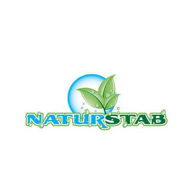 LOGO_Natur-Stab Fugensand