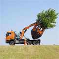 LOGO_Tree Spade Optimal 2500