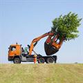 LOGO_Tree Spade Optimal 2500