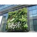 LOGO_Facade Greening