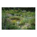 LOGO_Gärten und Pflanzen