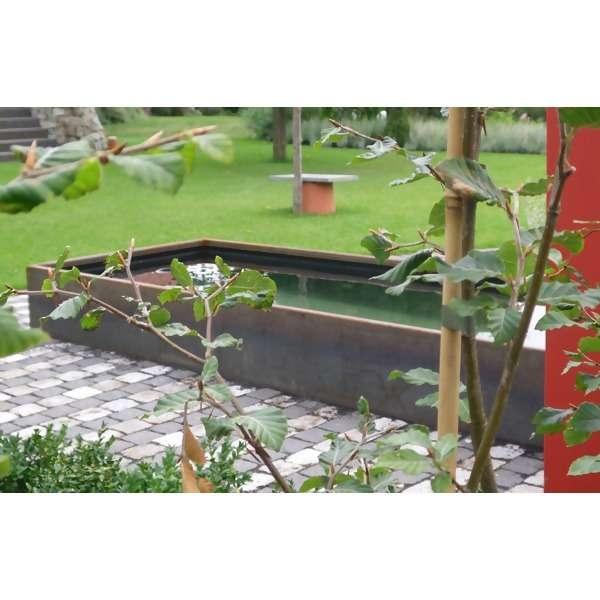 LOGO_Cort-Plus Wasserbeckensystem