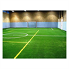 LOGO_TROFIL-GREEN® Indoor Champ