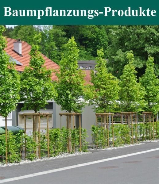 LOGO_Baumpflanzungs-Produkte