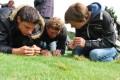 LOGO_Geprüfter Greenkeeper - Fachagrawirt/-in Golfplatzpflege (AGQ Typ C)