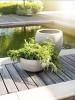 LOGO_naturelite (warm concrete)